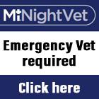 Emergency vets